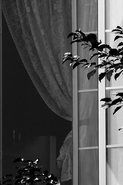 window-04.jpg