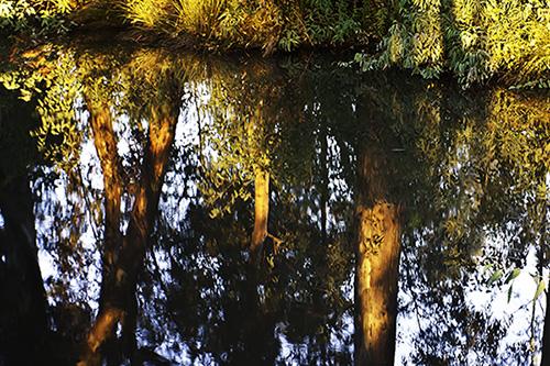 water-05.jpg