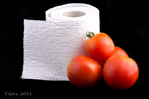 toilet-paper-project-01.jpg