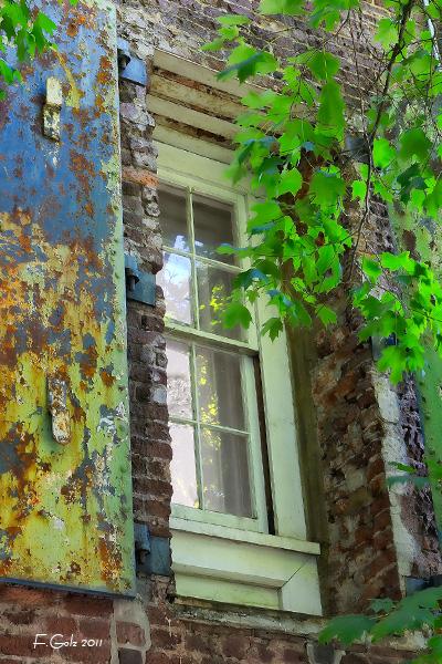 window-06.jpg