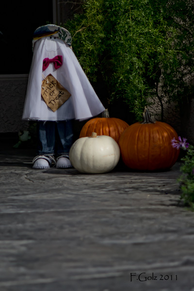 fall-and-halloween-decorations-01.jpg