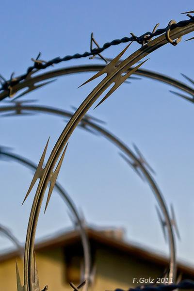 fence-02.jpg