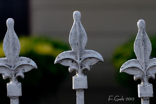 fence-05.jpg