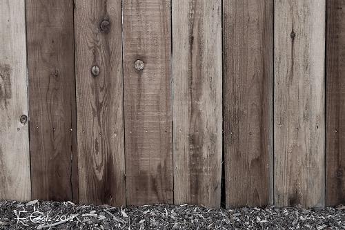fence-07.jpg