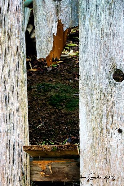 fence-08.jpg