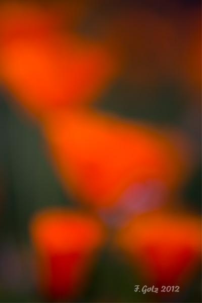 creative-blur-02.jpg