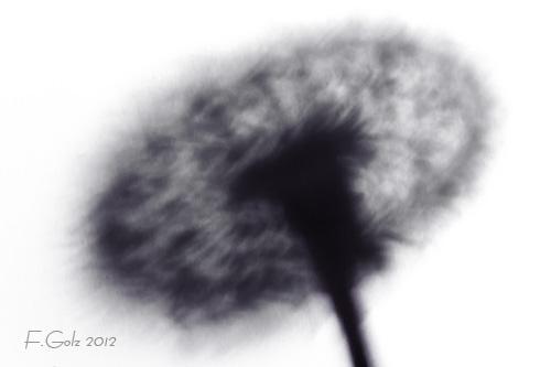 shadows-13.jpg