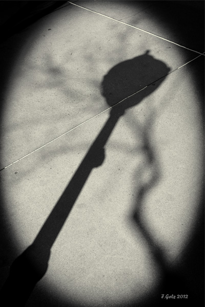 shadows-16.jpg