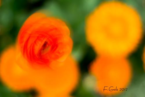 creative-blur-07.jpg