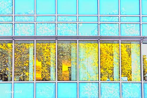 fall-08.jpg