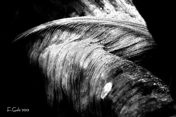 solarisation-05.jpg