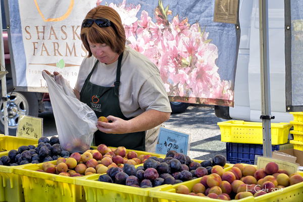 Farmers Market 03