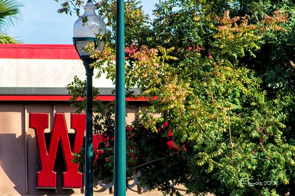 Fast Food Restaurants 05