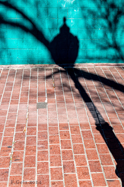 shadows 23