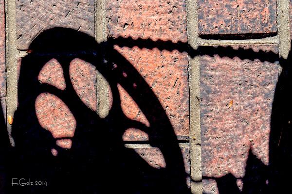 shadows 28