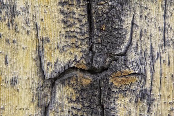 wood pattern 03