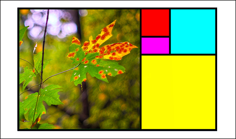 Golden mean template Fall colors 01
