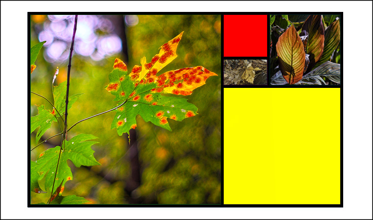 Golden mean template Fall colors 03