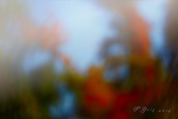 Blur 09
