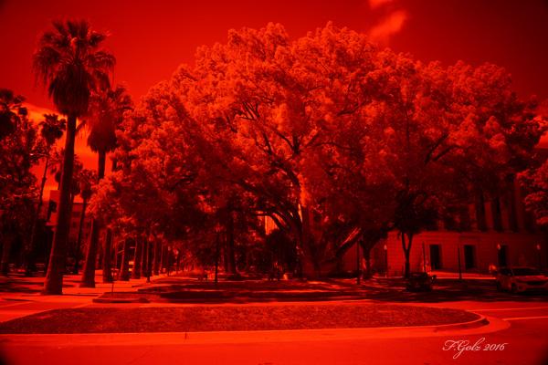 Digital Infrared 01a