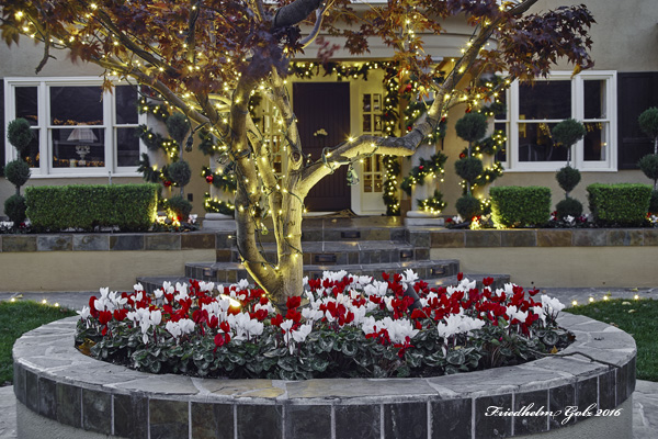 decorated-home-04